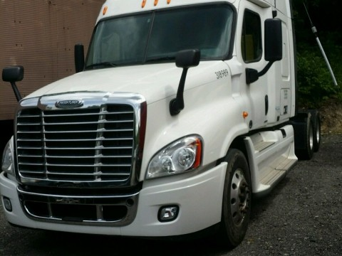 2010 Freightliner Cascadia Truck for sale