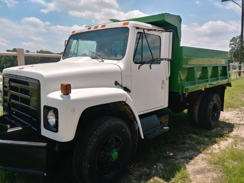 clean 1986 Internaitonal 1954 Dump Truck for sale