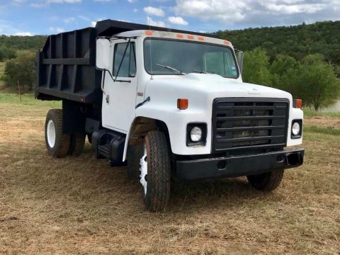 strong and solid 1984 International S1700 dump truck for sale