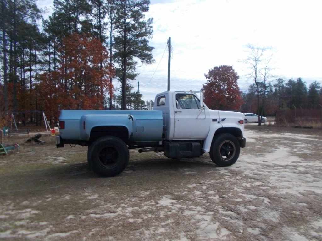 running 1983 Chevrolet project truck